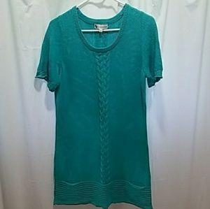 Adrienne Vittadini sweater/sweater dress